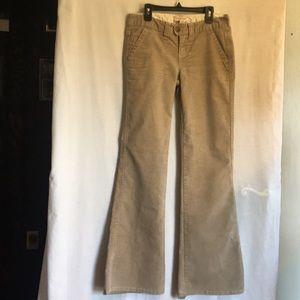 🌈Aeropostale Size 1/2 Regular Corduroy Pants